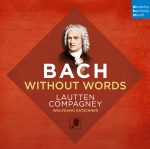 Lautten Compagney // Bach Without Words